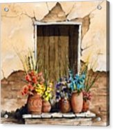 Door With Flower Pots Acrylic Print by Sam Sidders