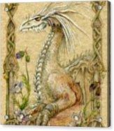Dragon Acrylic Print by Morgan Fitzsimons