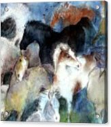 Dream Of Wild Horses Acrylic Print by Christie Michelsen