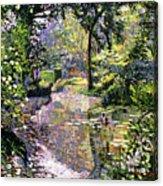 Dream Reflections Acrylic Print by David Lloyd Glover