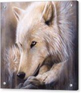 Dreamscape - Wolf Acrylic Print by Sandi Baker