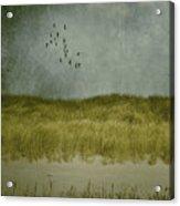 Dunes Acrylic Print by Joana Kruse