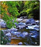 Early Autumn Along Williams River Acrylic Print by Thomas R Fletcher