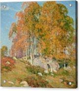 Early October Acrylic Print by Willard Leroy Metcalf