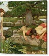 Echo And Narcissus Acrylic Print by John William Waterhouse