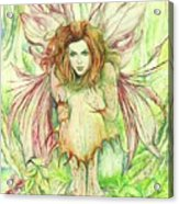 Edana The Fairy Collection Acrylic Print by Morgan Fitzsimons