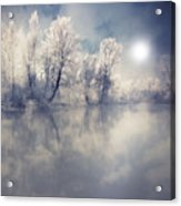 Endless Acrylic Print by Philippe Sainte-Laudy Photography