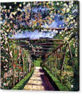 English Rose Trellis Acrylic Print by David Lloyd Glover