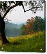 Evening In The Pasture Acrylic Print by Thomas R Fletcher