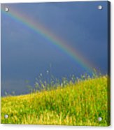Evening Rainbow Over Pasture Field Acrylic Print by Thomas R Fletcher