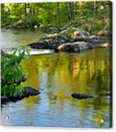 Evening Reflections At Lower Basswood Falls Acrylic Print by Larry Ricker