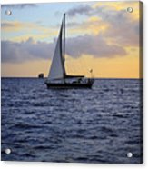 Evening Sail Acrylic Print by Cheryl Young
