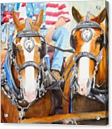 Everybody Loves A Parade Acrylic Print by Ally Benbrook