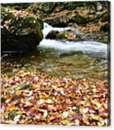 Fall Color Rushing Stream Acrylic Print by Thomas R Fletcher