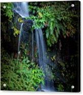 Fall In Eden Acrylic Print by Carlos Caetano
