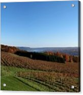 Fall In The Vineyards Acrylic Print by Joshua House
