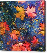 Falling Blue Leave Acrylic Print by Marilyn Sholin
