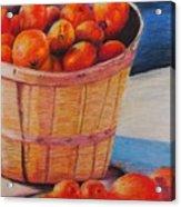 Farmers Market Produce Acrylic Print by Nadine Rippelmeyer