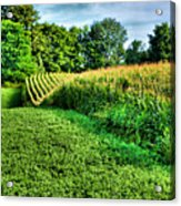 Field Of Dreams Iv Acrylic Print by Steven Ainsworth