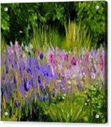 Fields Of Purple Acrylic Print by Lisa Konkol