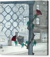 Finding Beauty Acrylic Print by Robert Meszaros