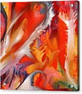 Fire Storm Acrylic Print by Peter Shor