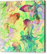 Fish Dreams Acrylic Print by Rachel Christine Nowicki