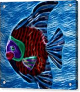 Fish In Water Acrylic Print by Shane Bechler