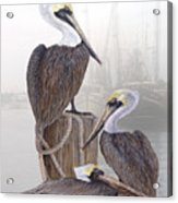 Fishing Buddies Acrylic Print by Kevin Brant