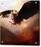 Flight Of The Eagle Acrylic Print by Mary Hood