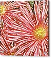 Floral Design No 1 Acrylic Print by Ben and Raisa Gertsberg