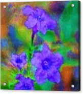 Floral Expression Acrylic Print by David Lane