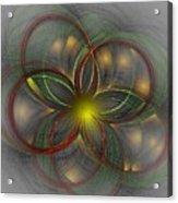 Floral Fractal 11-24-09 Acrylic Print by David Lane