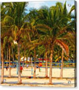 Florida Style Volleyball Acrylic Print by David Lee Thompson