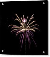 Flower Of Lights Acrylic Print by Kelly Schuler