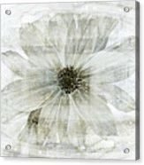 Flower Reflection Acrylic Print by Frank Tschakert