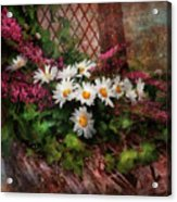 Flower - Still - Seat Reserved Acrylic Print by Mike Savad