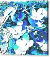 Flowers With A Difference Acrylic Print by TinaDeFortunata