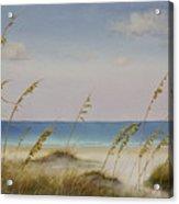 Folly Beach Acrylic Print by Cindy Davis