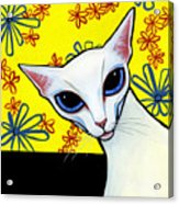 Foreign White Cat Acrylic Print by Leanne Wilkes