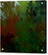 Fractal Landscape 11-21-09 Acrylic Print by David Lane