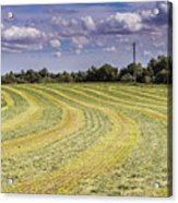 Freshly Mown Hay  Acrylic Print by John Trax