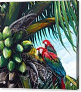 Friends Of A Feather Acrylic Print by Karin  Dawn Kelshall- Best
