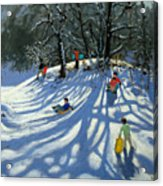 Fun In The Snow Acrylic Print by Andrew Macara