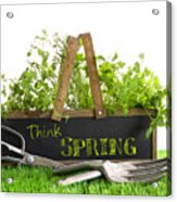 Garden Box With Assortment Of Herbs And Tools Acrylic Print by Sandra Cunningham