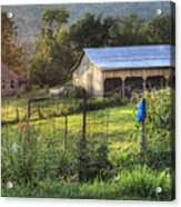 Garden View Acrylic Print by Pete Hellmann