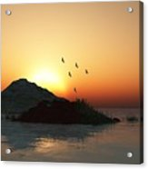 Geese And Sunset Acrylic Print by David Lane