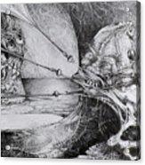 General Peckerwood In Purgatory Acrylic Print by Otto Rapp