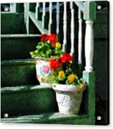 Geraniums And Pansies On Steps Acrylic Print by Susan Savad