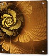 Gilded Flower Acrylic Print by John Edwards